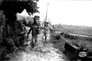 『綱引きをすると山が崩れる』。1959年、言い伝え通りに台風被害で崖崩れが起きた新里 / 南城市 旧佐敷町新里|おきなわアーカイブ